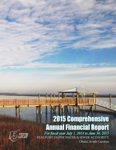 2015 Comprehensive Annual Financial Report